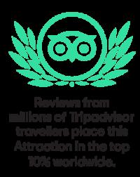 tripadvisor-mybesttour